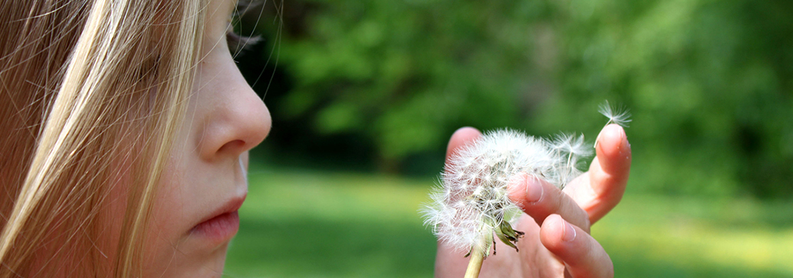 Wish for Happiness through Meditation in Torrance